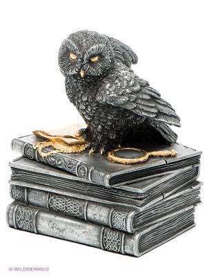 Шкатулка Мудрая сова Veronese. Цвет: антрацитовый