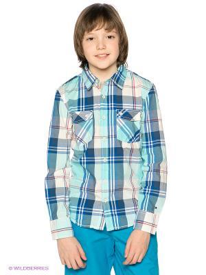 Рубашка Tommy Hilfiger. Цвет: бирюзовый, белый, синий