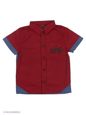 Рубашка Wojcik. Цвет: красный