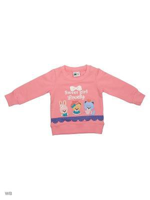 Свитшот Sago Kids i Ant Domain. Цвет: розовый