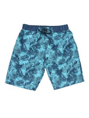 Купальные шорты Luminoso. Цвет: синий, бирюзовый