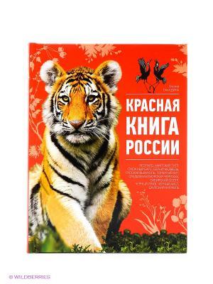 Красная России Эксмо. Цвет: красный