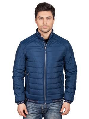 Куртка TAIS. Цвет: синий, лазурный