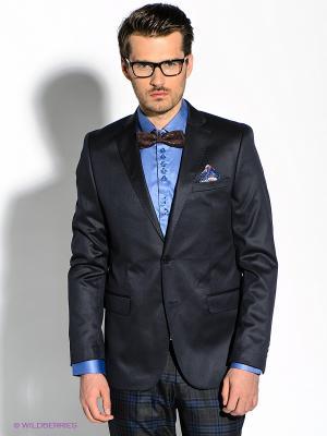 Пиджак Alex DANDY. Цвет: черный, темно-синий