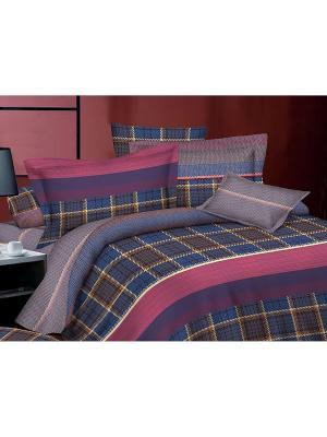 Комплект постельного белья евро, поплин BegAl. Цвет: фиолетовый