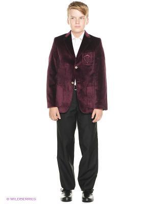Пиджак Cascatto. Цвет: бордовый