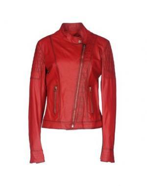 Куртка - -ONE > ∞. Цвет: красный