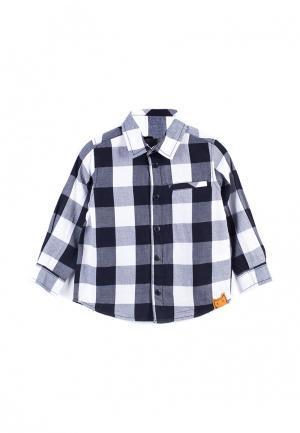 Рубашка Coccodrillo. Цвет: серый
