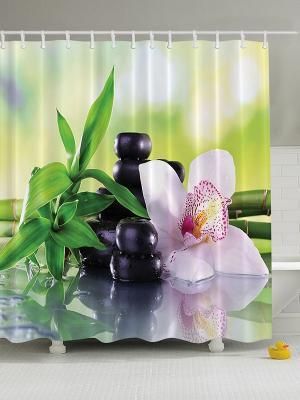 Фотоштора для ванной Цветочная феерия, 180*200 см Magic Lady. Цвет: зеленый, белый, фиолетовый, черный