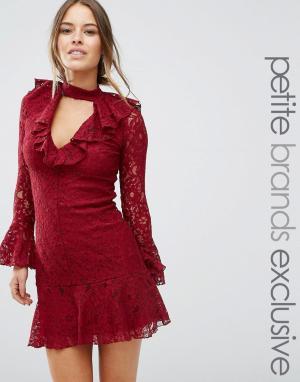 John Zack Petite Кружевное короткое приталенное платье с оборкой на кромке Pe. Цвет: красный