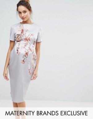 Hope and Ivy Maternity Облегающее платье миди с принтом птиц &. Цвет: синий