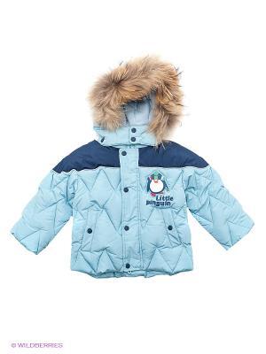 Куртка Baby Club. Цвет: голубой
