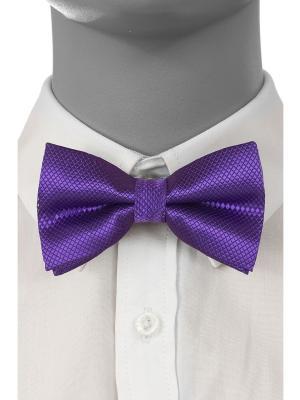 Бабочка Brostem. Цвет: фиолетовый