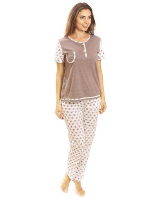 Костюм с брюками Алтекс.. Цвет: коричневый, темно-бежевый