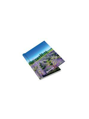 Дневник д/ ст. кл. с закрытым гребнем,  природа.лаванда Альт. Цвет: фиолетовый