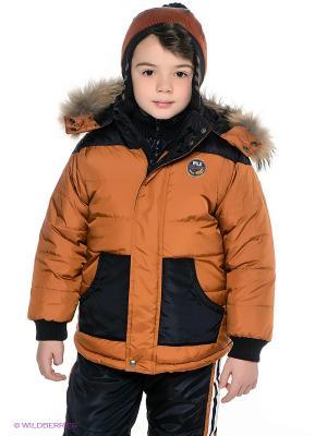 Куртка Wojcik. Цвет: бронзовый, черный