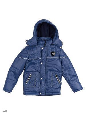 Куртки Senso kids. Цвет: синий