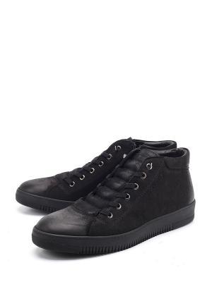 Ботинки FARFALLA ROSSO. Цвет: черный