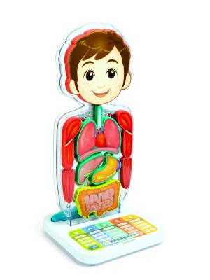 Oregon Scientific SA218 Интерактивная игрушка - Занимательная Анатомия Scientific.. Цвет: оранжевый