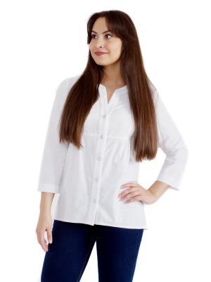 Блузка женская OLBE. Цвет: белый