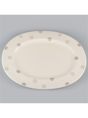 Блюдо овальное 34см Модди Quality Ceramic. Цвет: белый
