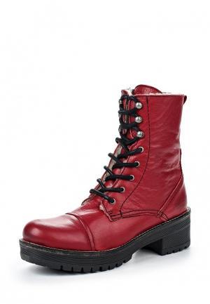 Ботинки Dali. Цвет: бордовый