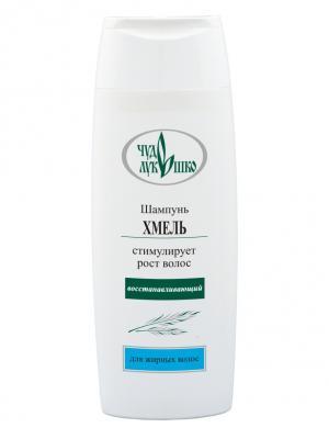 Шампунь ХМЕЛЬ Для жирных волос, восстанавливающий ЧУДО ЛУКОШКО. Цвет: светло-зеленый