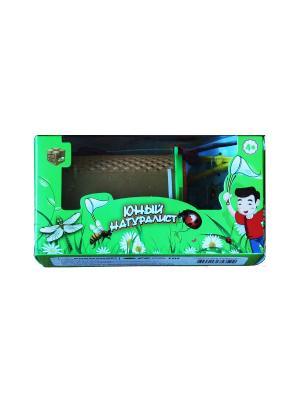 Игровые наборы Склад Уникальных Товаров. Цвет: зеленый
