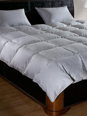 Одеяла Primavelle. Цвет: серый