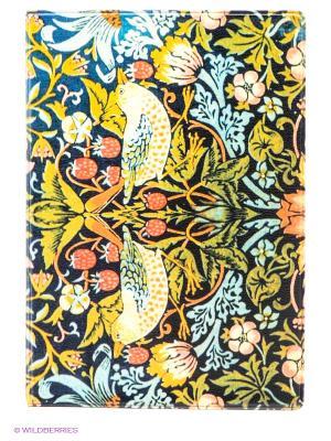 Обложка для паспорта Райская птица Mitya Veselkov. Цвет: оливковый, голубой, коралловый, темно-синий