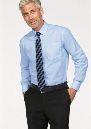 Однотонная рубашка STUDIO COLETTI. Цвет: белый, бордовый, голубой, серо-коричневый, серый, синий, темно-серый