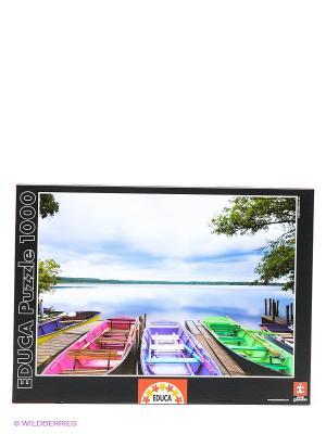 Пазл 1000 деталей - Межсезонье Educa. Цвет: зеленый, голубой, фиолетовый, розовый