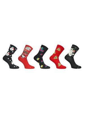 Носки 5 пар Master Socks. Цвет: антрацитовый, малиновый