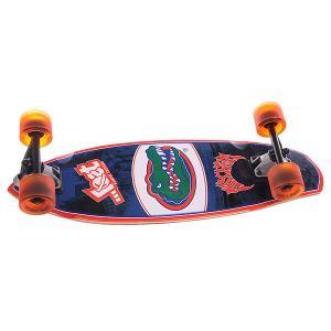 Скейт мини круизер  University Of Florida Blue/Orange 8.75 x 28 (71.1 см) Lost. Цвет: синий,зеленый,красный