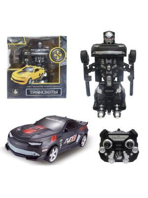 Робот на р/у 2,4GHz, трансформирующийся в маслкар, чёрный 1Toy. Цвет: серый
