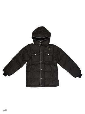 Куртка Cherche. Цвет: черный
