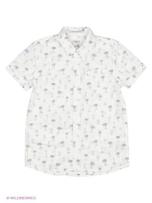 Рубашка PEPE JEANS LONDON. Цвет: молочный