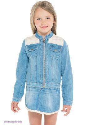 Куртка CHICCO. Цвет: голубой