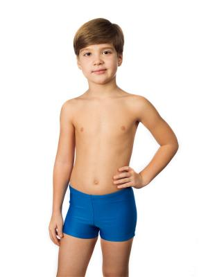Плавки-шорты KICKERS. Цвет: голубой