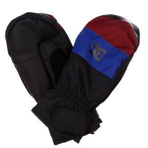 Варежки сноубордические DC Seger Mitt Surf  Web Shoes. Цвет: синий,черный,бордовый
