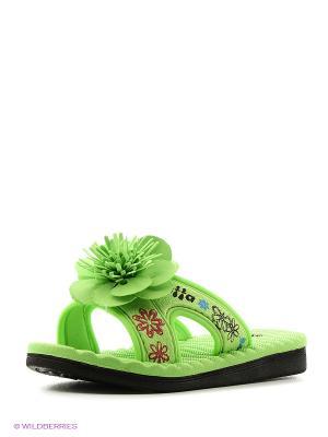 Пантолеты Effa. Цвет: зеленый