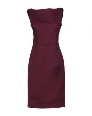 Платье до колена ANTONELLI. Цвет: баклажанный