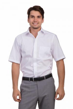 Рубашка с коротким рукавом Olymp. Цвет: белый