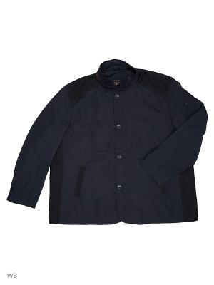 Ветровка IFC. Цвет: черный, темно-синий, темно-бордовый