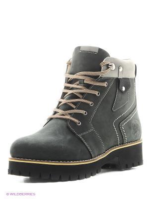 Ботинки Dino Ricci. Цвет: зеленый, серый