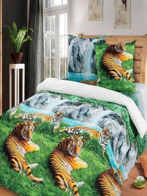 Комплект постельного белья 1,5-сп Арт Постель. Цвет: зеленый