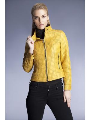 Куртка CATTAIL WILLOW. Цвет: желтый