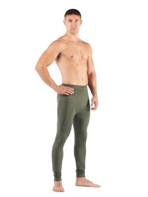 Штаны мужские Lasting Ateo, зеленые. Цвет: зеленый