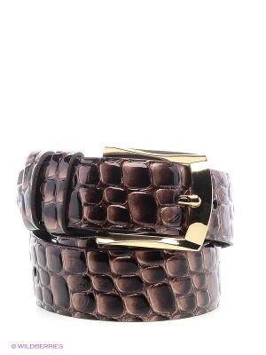 Ремень Vittorio Richi. Цвет: темно-коричневый