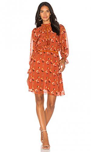 Короткое платье emma Carolina K. Цвет: оранжевый